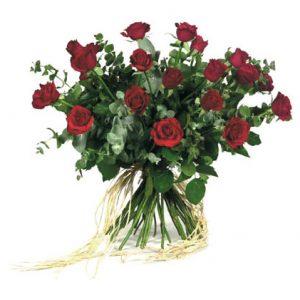 ורדים גבוהים