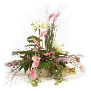 Pink exotic arrangement