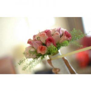 ורדים בגווני ורוד