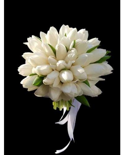 פרחי גורדון tulip