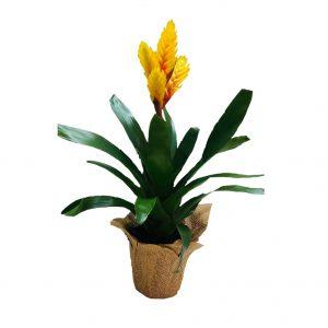Желтый Вризе цветочный горшок