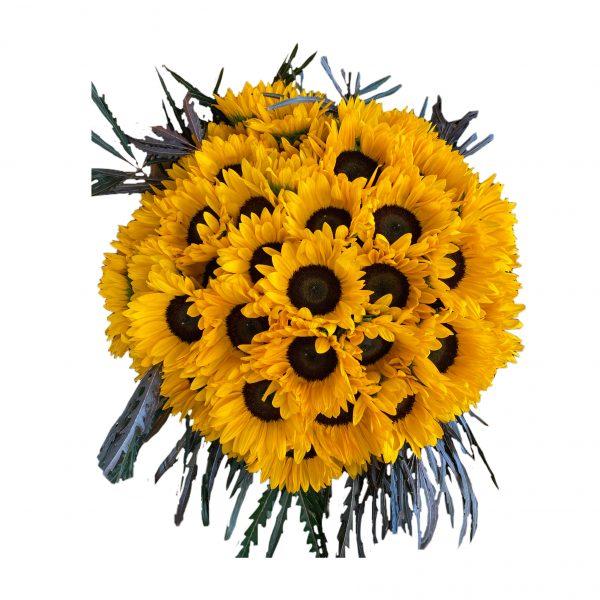 פרחי גורדון זר חמניות