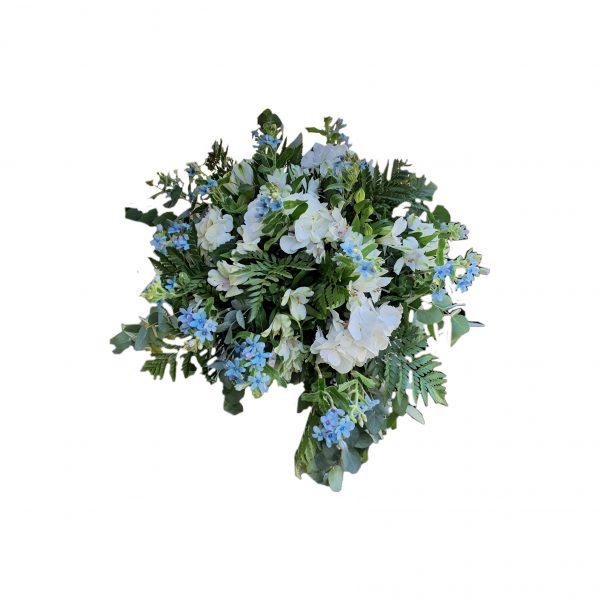 פרחי גורדון ניקול כחול